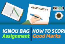 Photo of IGNOU BAG Assignment- How to Score Good Marks