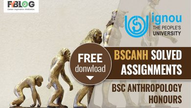 Ignou BSCANH Solved Assignments
