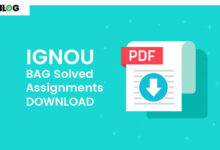 Ignou BAG Solved Assignments Download